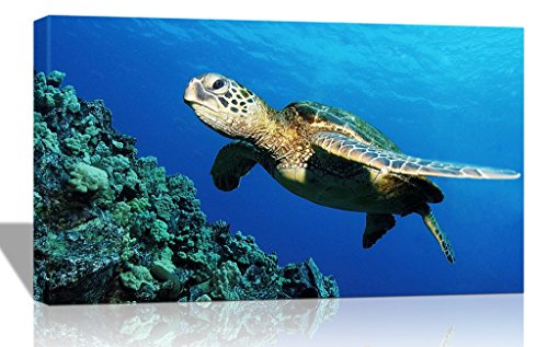 Purple Verbena Art One Piece Stretched and Framed Submarine Turtle under the Sea Pictures Photo Prints on Canvas Wall Paintings, High Giclee Walls Artwork for Home Office Decor Decorations. 12x16 - Piece One Photo