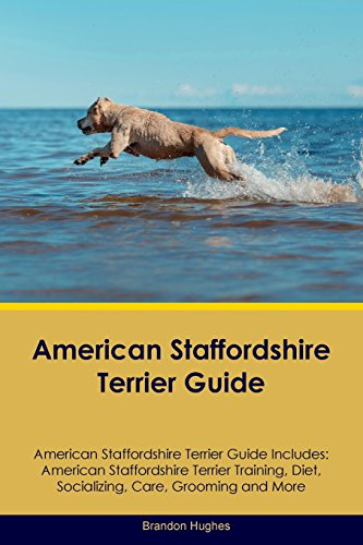 Terrier Staffordshire American - American Staffordshire Terrier Guide American Staffordshire Terrier Guide Includes: American Staffordshire Terrier Training, Diet, Socializing, Care, Grooming, Breeding and More