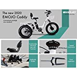 Emojo Caddy Pro Electric Tricycle 48V 500W Best