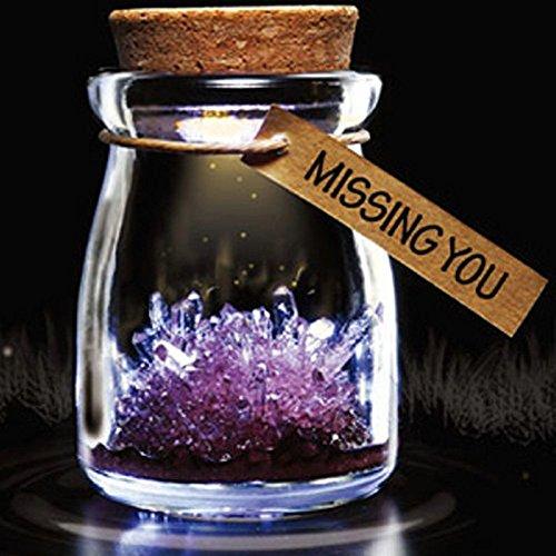 Golandstar DIY Growing Crystal Glasses Wish Bottle Jar Powder LED Mood Light Lamp Wishing Vial Flower (Purple) (Plants In A Jar)
