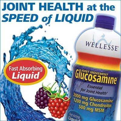 Wellesse conjointe Mouvement Liquid glucosamine avec chondroïtine 33,8 Onces