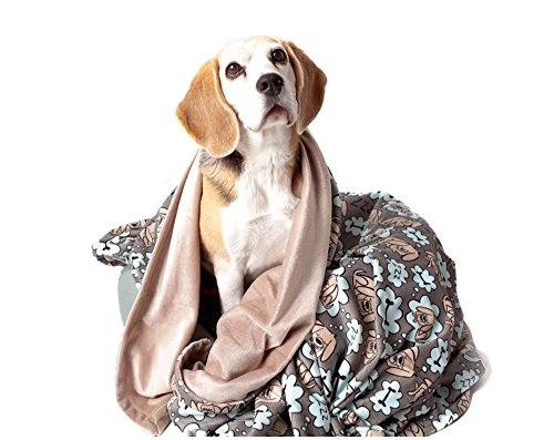 UTEX Premium Microfiber Pet Blanket, for Small/Medium/Large Dogs, Puppy Kitten Bed, Warm, Soft, Plush (Small (32