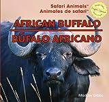 African Buffalo, Maddie Gibbs, 1448826047