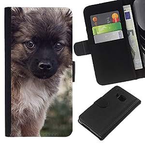 Puppy Keeshond Fluffy Furry Small Dog - la tarjeta de Crédito Slots PU Funda de cuero Monedero caso cubierta de piel HTC One M9