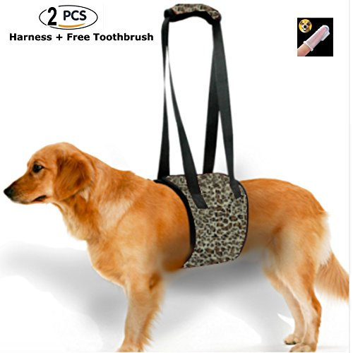 Dog Lift Support Harness Rehabilitation-Assist Sling for Medium & Large Size Older Disabled Injured Dogs Bad Joints Balance Mobility