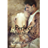 Perfect Imperfections: A Rock Star Contemporary Gay Romance