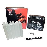 YUASA BATTERIE YTX12-BS AGM aperto con imballaggio acido, 10,5 Ah, 150x87x130 mm