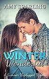 Winter Wonderful (Summer Unplugged Book 7)