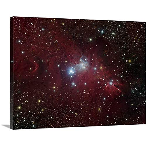 GREATBIGCANVAS Gallery-Wrapped Canvas Entitled The NGC 2264 Region Showing The Cone Nebula, Christmas Tree Cluster, and Fox Fur Nebula by Filipe Alves 40