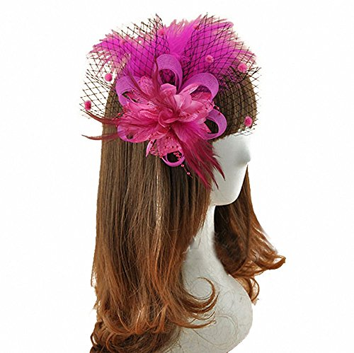 [Removable Fascinator Hair Clip Feather Wedding Headwear Bridal 1920s Headpiece Women (Rose Red)] (Ethnic Hats)