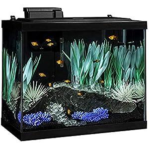 Tetra ColorFusion 20 Gallon Fish Tank Kit