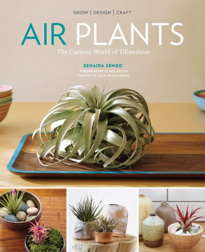 Air Plants: The Curious World of Tillandsias by [Sengo, Zenaida]