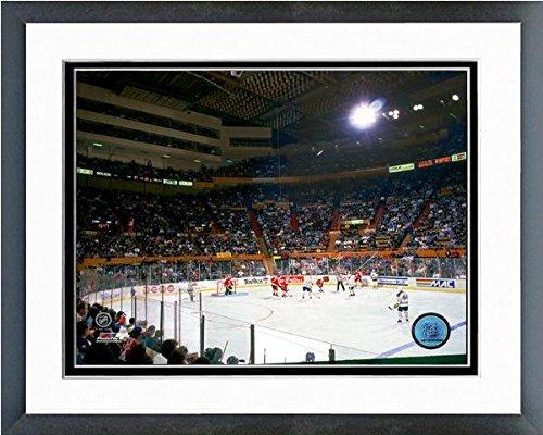 - Buffalo Memorial Auditorium Sabres NHL Photo (Size: 12.5