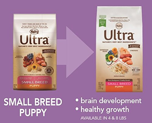 NUTRO-ULTRA-Small-Breed-Puppy-Dry-Dog-Food-8-Pounds