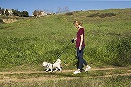 The Company of Animals HALTI Retractable Lead, Purple, Small