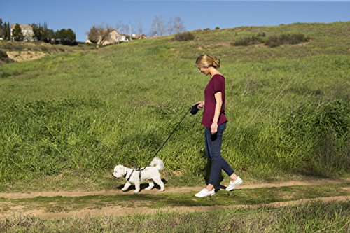 The Company of Animals - HALTI Retractable Dog Leash - One Button Break and Lock - Large - Red by The Company of Animals (Image #4)