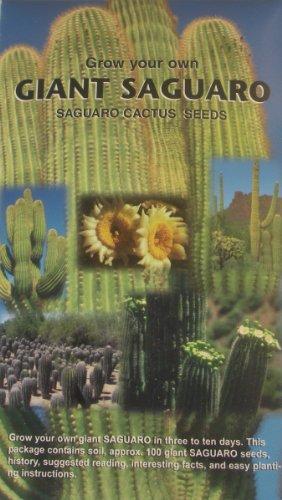 Saguaro Cactus (Grow Your Own Giant Saguaro – Contains Aprox. 100 Cactus Seeds – Southwest Novelty Gift – Souvenir – Plant Your Own Cactus Garden - Cacti)
