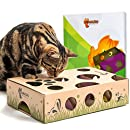 CAT AMAZING - Best Interactive Cat Toy Ever! Cat Treat Maze & Puzzle Game for Cats