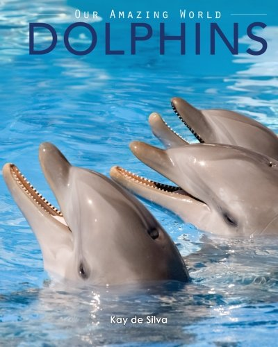 Dolphins Amazing Pictures Animals Nature