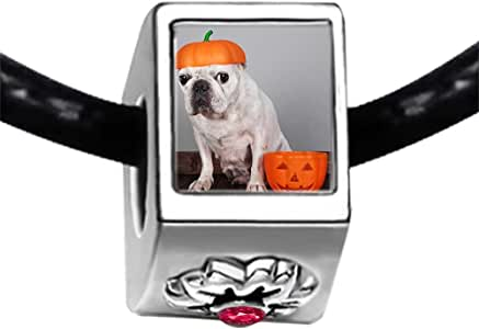 Chicforest Silver Plated dog with Halloween pumpkin head Photo Red Zircon Crystal July Birthstone Flower Charm Beads Fits Pandora Charms