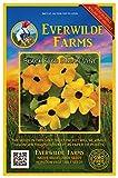 Everwilde Farms - 100 Black-Eyed Susan Vine Wildflower Seeds - Gold Vault Jumbo Seed Packet