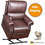 Serta® Perfect Lift Chair -Plush Comfort Recliner with Gel-Infused Foam Ergonomic Hand Held Control With 2 Large LED Buttons and USB Port for Charging Phones -Lifetime Warranty (Cocoa 900)