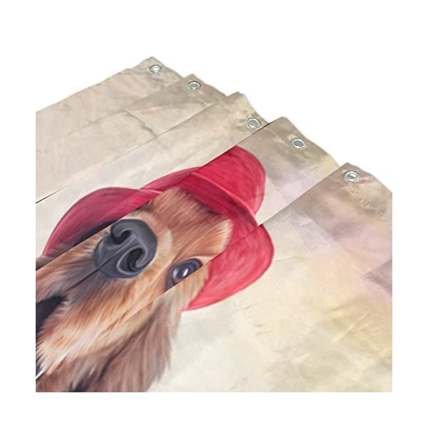 ALAZA English Cocker Spaniel Dog Shower Curtain 72 x 72 Inch Waterproof Polyester Decoration Bathroom Curtain with Hooks 3