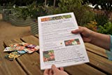 The Micro Gardener Laminated Perpetual Moon Calendar Planting Guide Double-sided 365