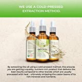 Organic Castor Oil - USDA Certified Organic