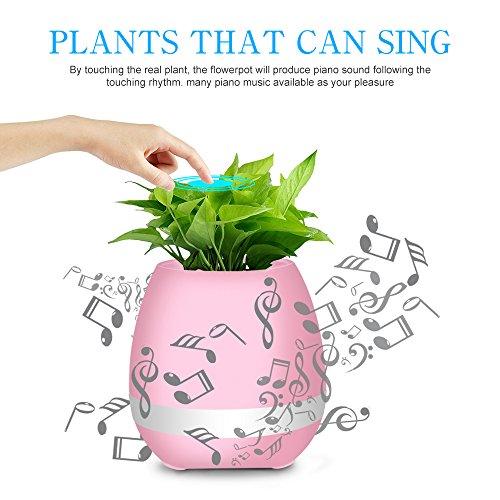 Review Music Flowerpot, Wayrank Smart