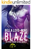 BLAZE: A New Adult Romantic Suspense (The Wild Flames Series Book 3)