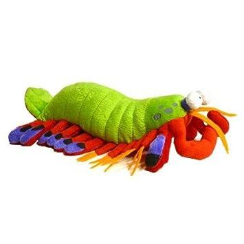 Amazon Com 14 Harlequin The Mantis Shrimp Stuffed Animal Plush Toy