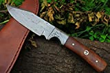 DKC-516 HUNTER Damascus Bowie Hunting Handmade Knife Fixed Blade 7.9 oz 9