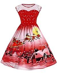 Women's Vintage Plus Size Illusion Neck Sleeveless Christmas Swing Dress