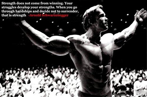 Arnold Schwarzenegge Body Building Nice Silk Fabric Cloth Wall Poster Print (20x13inch) (Cloth Silk Poster)