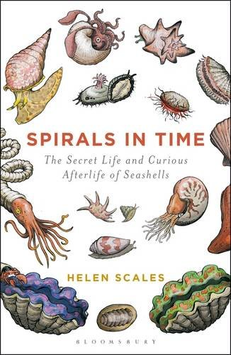 Spirals in Time: The Secret Life and Curious Afterlife of - Seashell Pant