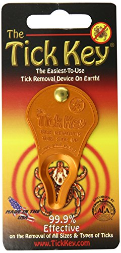 The Tick Key DTK002046 6-Pack Tick Key, Orange