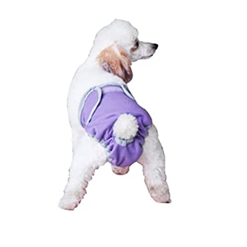 UEETEK Pantalones Fisiológicos de Mascotas Perros Ropa Interior de Anima Dómestico size M (Púrpura)