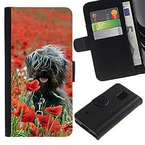 Samsung Galaxy S5 V SM-G900 - Dibujo PU billetera de cuero Funda Case Caso de la piel de la bolsa protectora Para (Surfer Dog On Field)