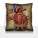 Liili Throw Pillowcase Polyester Satin Comfortable Decorative Soft Pillow Covers Protector sofa 16x16, 1pack IMAGE ID: 11840341 Human heart in an old vintage grunge medical document texture a