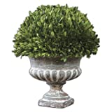 Uttermost Preserved Boxwood Garden Urn with Natural Foliage That Is Picked From Real Boxwood Plants