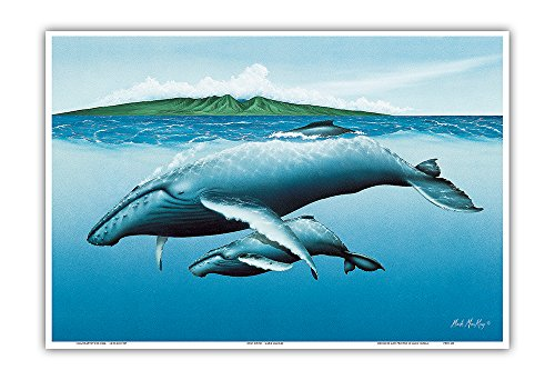 Pacifica Island Art New Birth - Hawaiian Humpback Whales (Kohol_) - Mother and her Calf - Original Color Painting by Mark MacKay - Hawaiian Master Art Print - 13 x 19in