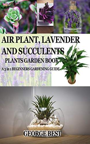 Air Plant Lavender And Succulents Plants Garden Book A 3 In 1
