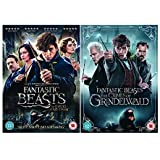 Fantastic Beasts 1-2 DVD Collection: Fantastic Beasts and Where To Find Them / Fantastic Beasts: The Crimes of Grindelwald