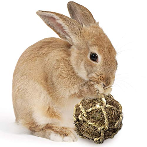 SunGrow Ball Rabbit Improves Dental Health, 100% Natural Chew Toy, Provides Hours Stimulation, Environment Friendly, Stress Reliever, Ideal Bunny, Chinchilla & Kitten