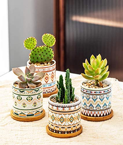 ROSE CREATE 3.0 Inches Cylinder Colorful Ceramic Succulent Planters, Mini Bonsai Pots for Window Desk Home Decor