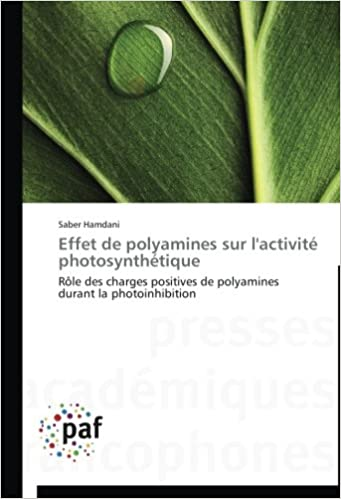 Lire Effet de polyamines sur l'activité photosynthétique: Rôle des charges positives de polyamines durant la photoinhibition pdf