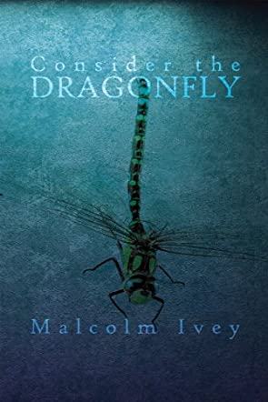 Consider the Dragonfly