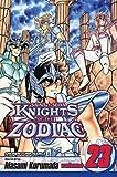 img - for [ Knights of the Zodiac (Saint Seiya), Volume 23: Underworld: The Gate of Despair ] By Kurumada, Masami ( Author ) [ 2008 ) [ Paperback ] book / textbook / text book
