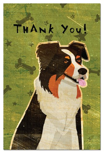 Tree-Free Greetings Eco-Notes Thank You Card Set, 4 x 6 Inches, 12-count Cards with Envelopes, Australian Shepherd - Cards Australian Gift